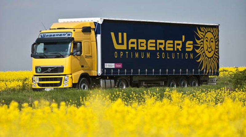 Waberer's main shareholder is considering selling its shares